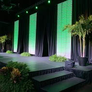 Stage Set with Drape & 3D Wall Panels