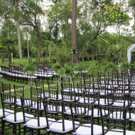 Chiavari Chair: Mahogany Wooden