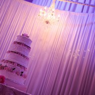 Cake Table Backdrop