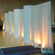 White Sheer with Uplighting and Columns
