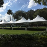 Tents/Marquee/tent_40x120_sq