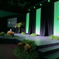 Custom Stage Set with Drape & 3D Wall Panels